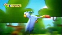 انشودة الببغاء - طيور بيبي وطيور الجنة