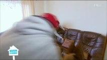 Bataille de coussins dans maison à vendre