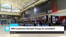 NRA endorses Donald Trump for president