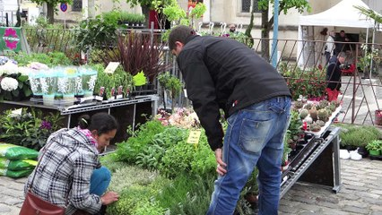 meru : Un salon du jardin bien animé en centre ville