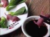 Des souriceaux vivants au menu d'un restaurant taïwanais