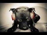 Emotional Hip Hop Rap Beat w-H Leona lewis ''run'' remake