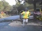 Accident voiture sauvé par un arbre