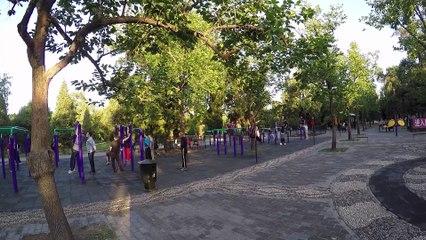 Dans le jardin du Palais du Ciel (Pékin)