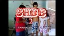 SHDB  2 - Guerreiros Prateados