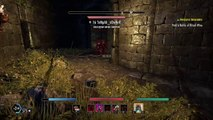 The Elder Scrolls Online: Tamriel Unlimited Werewolf pvp imperial sewers