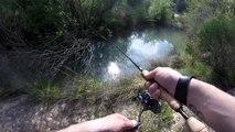 pêche aux leurres!! attaque de brochet en direct!!