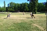 Last 2 stones of the Canberra 2013 Jugger Tournament