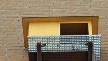 Waarom worden de ramen van het Gasunie-gebouw niet gewassen? - RTV Noord