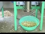 Máy bóc vỏ tỏi khô, máy tách vỏ tỏi làm gia vị, máy bóc vỏ tỏi khô, máy bóc vỏ tỏi