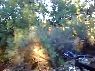 riding bikes and jumping in moorpark 1