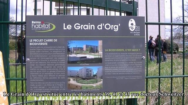 Clip Graind'org