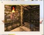 Legend Of Grimrock - Debian GNU/Linux - Sample gameplay