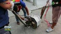 Un python coincé dans la cuvette des toilettes attaque un homme venu faire ses besoins