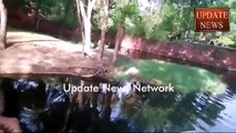 Man Jumps Into Lion Lounge In Nehru Zoological Park in Hyderabad India