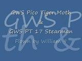 GWS Pico Tiger Moth and GWS pt 17 Stearman