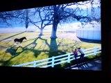 SuperBowl XLVIII Commercial Set 15 (Budweiser, GoDaddy & Doritos)