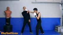 3 Wing Chun Techniques vs Boxing Crosses - L2 Wing Tsun Ip man 3