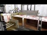 HCE Hot Melt Case Erector 25 cpm