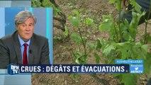 Intempéries: Stéphane Le Foll promet des aides aux viticulteurs