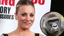 Kaley Cuoco Joins #RipHarambe Trend With Instagram Post