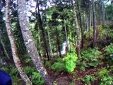 The Fundy Trail | Biking | Fundy National Park, New Brunswick, Canada