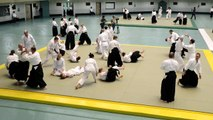 Finnish Delegation Aikido Demonstration - 54th All Japan Aikido