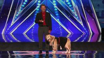 José and Carrie Dancing Dog Shows Her Sweet Moves America's Got Talent 2016 Auditions