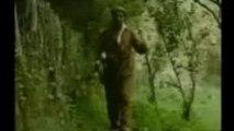 idris şemzini - İdris Şemzini yarnabê