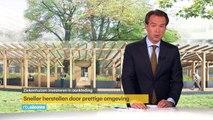RTL4 Nieuws 20 juni 2015 Chemokuur in tuin slaat beter aan