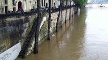 À Paris, le niveau de la Seine n'en finit plus de monter - Les quais de l'Ile-Saint-Louis sont désormais submergés