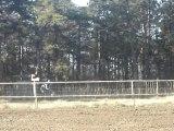 motocross honda 125 cr