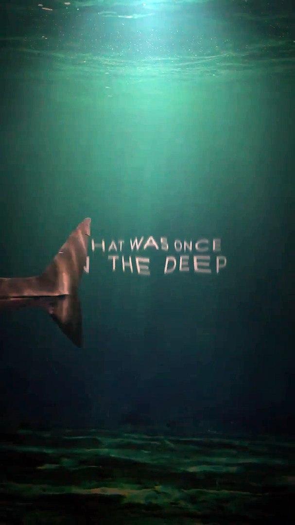 THE SHALLOWS - Blake Lively - Shark Horror Movie