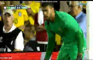 Miller Bolanos Disallowed Goal ~ Brazil vs Ecuador