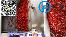 high quality automatic pepper chilli cutter chilli slicer machine in china seed sperator