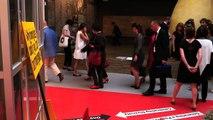 Déplacement d'Emmanuelle Cosse à la Biennale de Venise