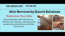 Attic Cleaning Services In New Jersey