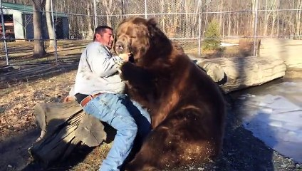 homme et ours