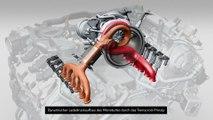 Audi S4 und S4 Avant - Animation 3.0 TFSI