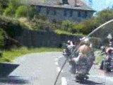 Harley-Davidson hog 07