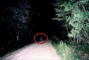 Most Haunted Forests and Woods -- Creepiest Places That Claim To Be Proof Of Ghosts