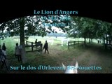 Urlevent des Nouettes - Le Lion d'Angers - CCE Amateur 1 - Cross en caméra embarquée - 29-05-16