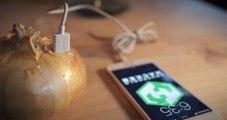 Soğan Ve Enerji İçeceği Birleşince Cep Telefonu Şarj Oluyor