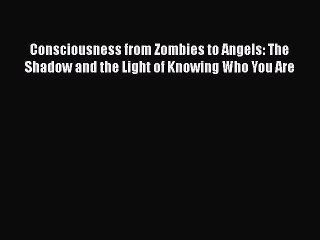 Read Book Consciousness from Zombies to Angels: The Shadow and the Light of Knowing Who You