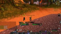 World Of Warcraft Burning Crusade Hunter PvP lvl 49 Clip Vs Druid