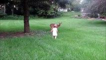 Bambi se laisse caresser par une petite fille de 2 ans... Trop mignon le Faon
