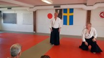 Kristianstad Aikido klubb 20 års jubileum.