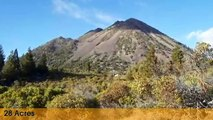 Land For Sale: 28 acres Spring Hill Road  Mt. Shasta, California 96067