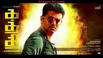 Kaththi flop in kerala proved totally Kaththi would have collected just 20 crores only maximum