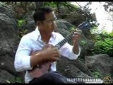 Jake Shimabukuro (Ukelele) - While My Guitar Gently Sweeps